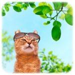 日焼けは絶対にしたくない!簡単にできる予防法を紹介!
